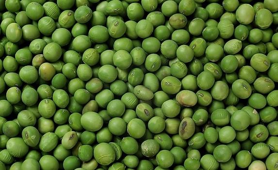 果蔬百科怎么挑选青豆